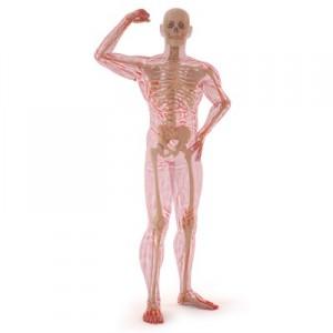 Benefits of Vitamin D for Healthy Bones