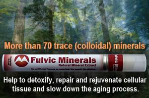 Fulvic Minerals – A hidden Health Treasure