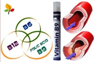 B Vitamins Clean Out Arteries